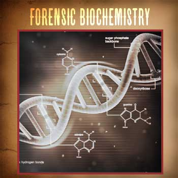 Forensic Biochemistry option