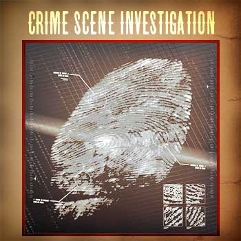 Crime Scene Investigation option